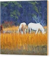 Marsh Ponies Wood Print