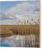 Marsh Reed Wood Print
