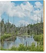 Marsh Scene Wood Print