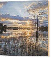 Marsh Sunrise Wood Print