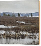 Marsh Tones Wood Print
