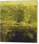 Marsh Under Wood Print