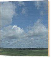 Marsh Waterways Wood Print