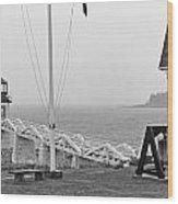 Marshall Point Lighthouse 2963 Wood Print