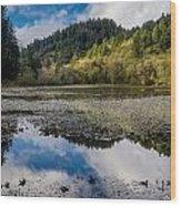 Marshall Pond In Autum Wood Print