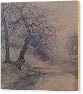 Marshell Creek Wood Print