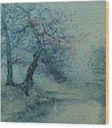 Marshell Creek IIi Wood Print