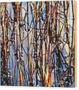 Marshgrass Wood Print