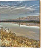 Marshlands 2 Wood Print