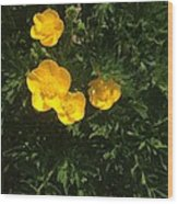Martha's Flowers Wood Print