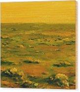 Martian Desert Landscape Art  Wood Print