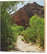 Martinez Canyon Wood Print