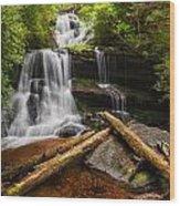 Martins Creek Falls Wood Print