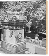 Mary And John Tyler Memorial Near Infrared Black And White Wood Print