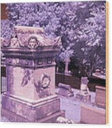 Mary And John Tyler Memorial Near Infrared Lavender And Pink Wood Print