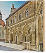 Mary Of Bistrica Shrine Architecture  Wood Print