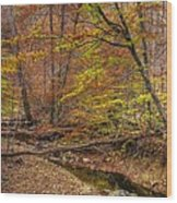 Maryland Country Roads - Autumn Colorfest No. 7 - Catoctin Mountains Frederick County Md Wood Print