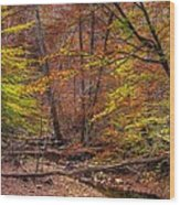Maryland Country Roads - Autumn Colorfest No. 8 - Catoctin Mountains Frederick County Md Wood Print