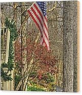 Maryland Country Roads - Flying The Colors 1a Wood Print by Michael Mazaika