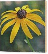 Maryland Girl II Wood Print