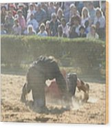 Maryland Renaissance Festival - Jousting And Sword Fighting - 1212102 Wood Print