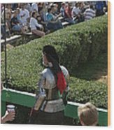 Maryland Renaissance Festival - Jousting And Sword Fighting - 1212198 Wood Print