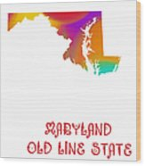 Maryland State Map Collection 2 Wood Print