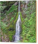 Marymere Falls - Full View Wood Print