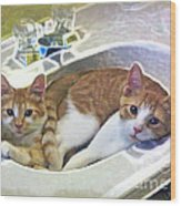 Mary's Cats Wood Print by Joan  Minchak