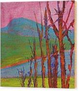 Mary's Peak 9 Wood Print