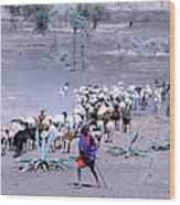 Masai Herder Boy Wood Print