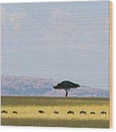 Masai Mara Wildebeest Migration Wood Print