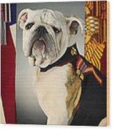 Mascot Of The United States Marine Corps Wood Print