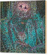 Lady Behind The Mask Wood Print