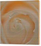 Master Of Beauty Wood Print