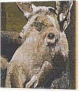 Mat-su Moose Wood Print