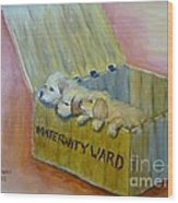 Maternity Ward Wood Print