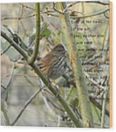 Mathew 6 Vs 26 Thrush Wood Print