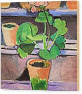 Matisse's Pot Of Geraniums Wood Print