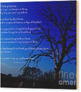 Matthew 7 15-20 Wood Print