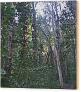 Maui Forest Wood Print