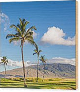 Maui Hawaii Wood Print