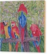 Maui Macaws Wood Print