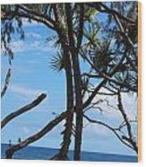 Maui Tree Silhouette Wood Print