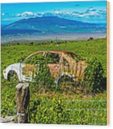 Maui Upcountry Rusted Car Wood Print
