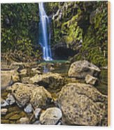 Maui Waterfall Wood Print by Adam Romanowicz