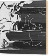 Max Stars And Stripes In Negative Wood Print