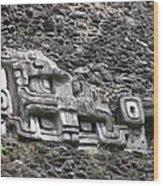 Mayan Hieroglyphics Wood Print