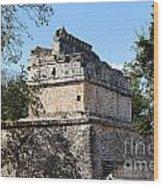 Mayan Ruin At Chichen Itza Wood Print