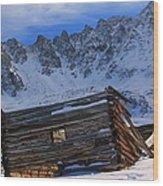 Mayflower Gulch Ruins Wood Print